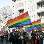Homo-Demo