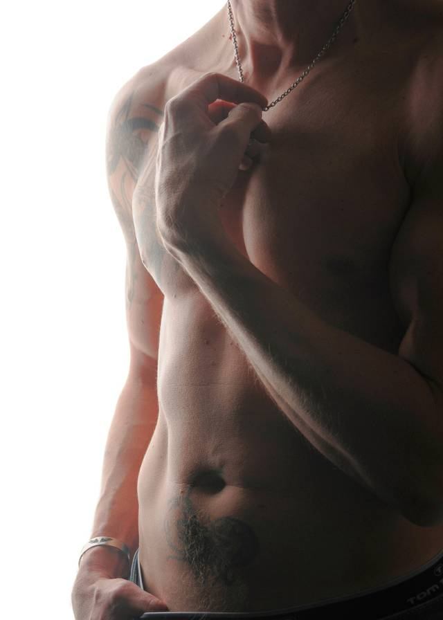 Muskel Body