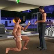 © Screenshot Sims