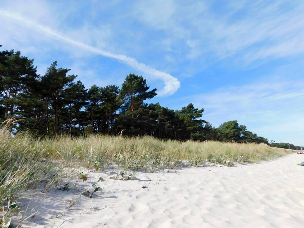 Ostsee, Natur