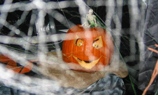 Halloween - Eagle