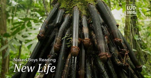 Naked Boys Reading: New Life, bilingual reading hosted by Cheryl Offoffoff-Broadway