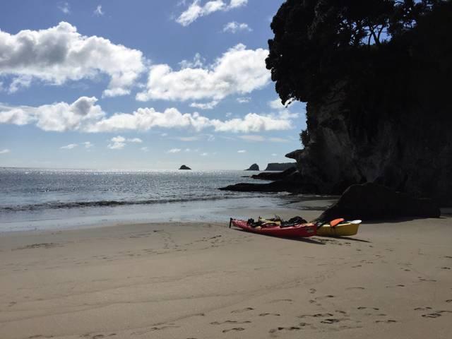 Coromandel Neuseeland