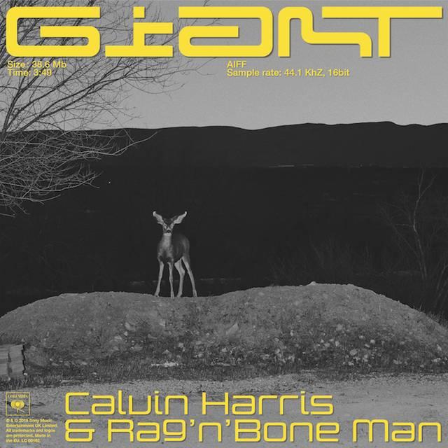 Calvin Harris und Rag'n'Bone Man