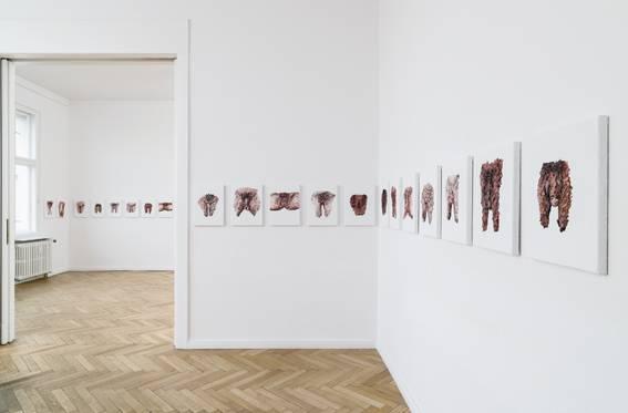 """Clemens Krauss: """"100 Cuts"""""""