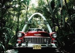 Tropicana-Havana, FOTOS: WERNER PAWLOK, WWW.LUMAS.DE
