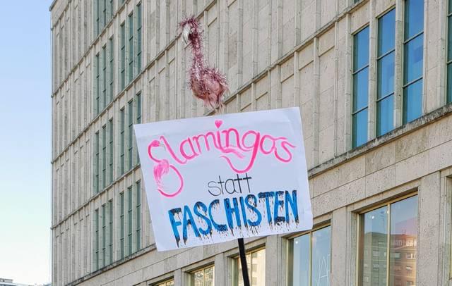 Flamingos statt Faschisten