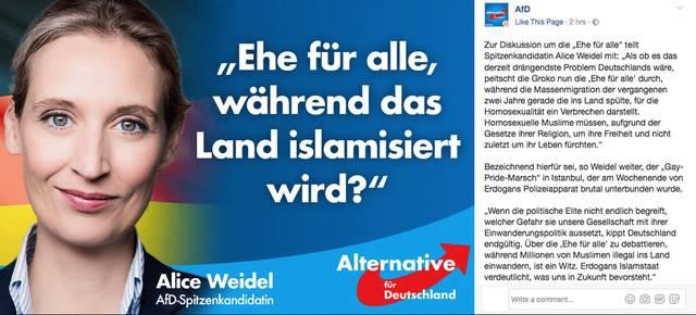 alice weidel facebook ehe islam.png
