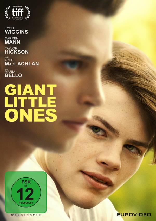 GiantLittleOnes_DVD_Cover.jpg