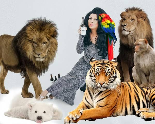 Nina Queer Tiger Queen