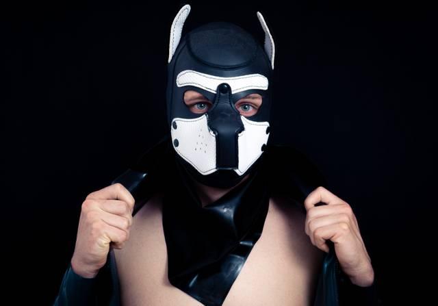 Maske Puppy