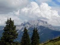 Wald, Berge, Alpen