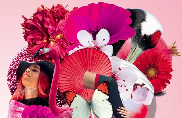 Camila Sosa Villada, Im Park der prächtigen Schwestern