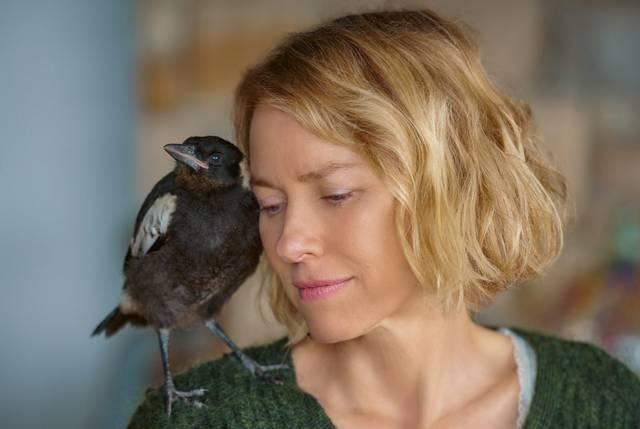BEFLÜGELT – Ein Vogel namens Penguin Bloom, Naomi Watts